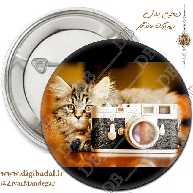 پیکسل طرح دوربین و گربه (پیکسل-جاسوییچی)